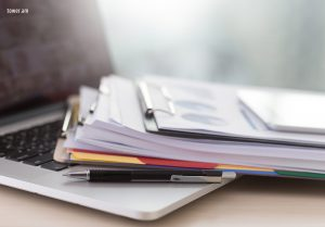 Accounting, tax and legal services in Armenia