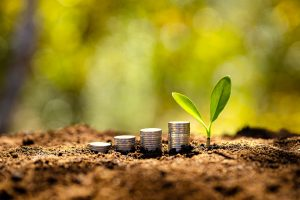 Which sectors are most profitable for investment in Armenia